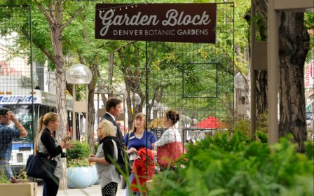 Experience Downtown – Downtown Denver Partnership