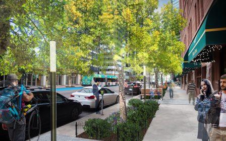 Broadway trees UFI